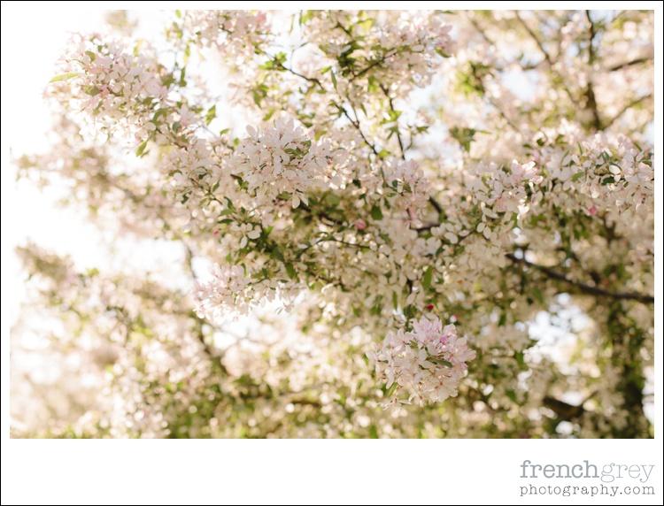 Wedding French Grey Photography Amy 228